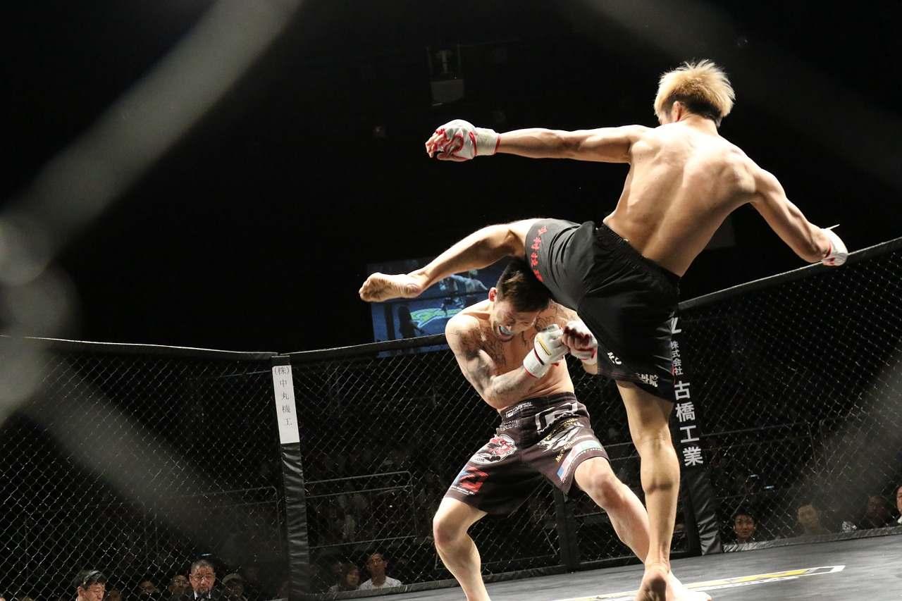 Trening siłowy w sportach walki, powinien być nieodłączną formą treningu zawodników. Trening siłowy pod MMA, taekwndoo, karate, BJJ